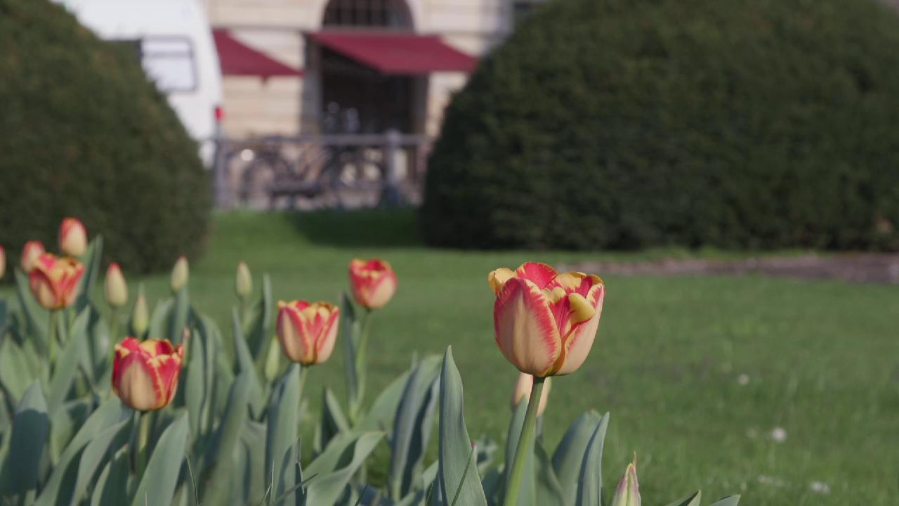 BVR-Frühlingsfest im Zeichen Europas